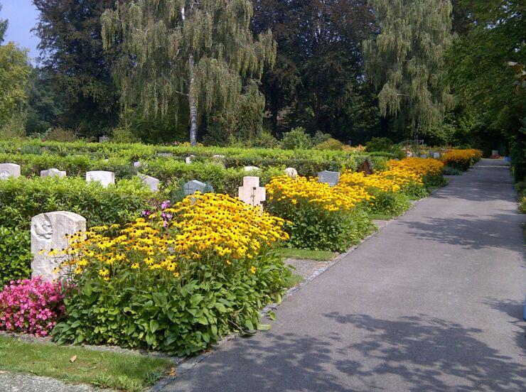Mit bunten Blumen bepflanzte Reihengräber auf dem Friedhof Madretsch